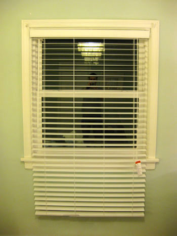 The blind and shutter gallery custom blinds shades shutters long blinds solutioingenieria Images
